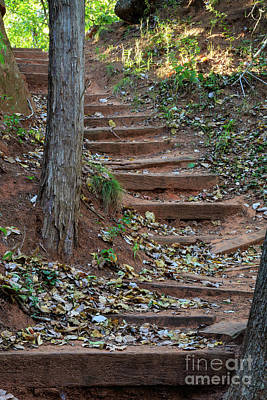 Photograph - Rustic Stairway by Richard Smith