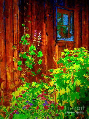 Rustic Summer Shed Art Print by Christine S Zipps