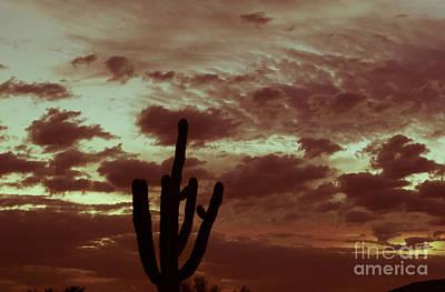 Photograph - Rustic Sunrise by Deniece Platt