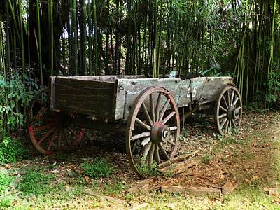 Photograph - Rustic Wagon by Joe Duket