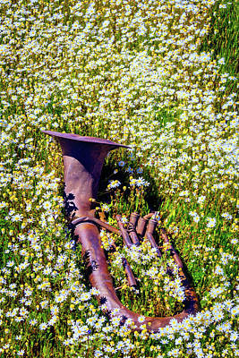 Tuba Photograph - Rusting Horn In The Flowers by Garry Gay