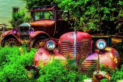 Rusting In The Garden Art Print by Garry Gay