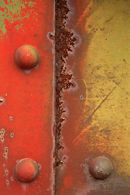 Photograph - Rusting by Karol Livote