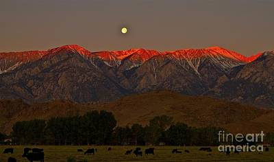 'rustlers Moon Ranchers Sunrise' Original
