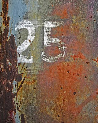 Photograph - Rusty 25 by David King