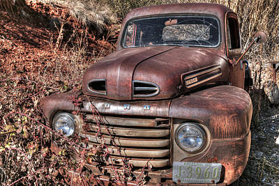 Photograph - Rusty 49 by Donna Kennedy