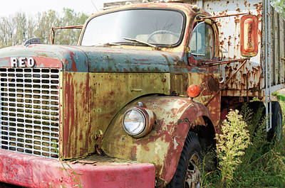 Photograph - Rusty And Crusty Reo Truck by Nick Mares