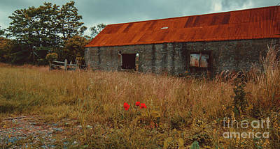 Photograph - Rusty Barn by Marc Daly