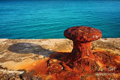 Rusty Bitt Art Print by Carlos Caetano