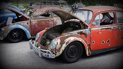 Photograph - Rusty Bugs by Laurie Perry