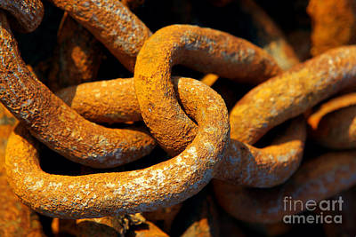 Bonding Photograph - Rusty Chain by Carlos Caetano