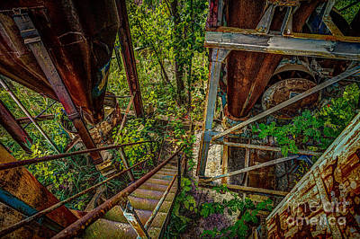 Photograph - Rusty Climb by Roger Monahan