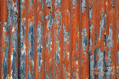 Photograph - Rusty Corrugated Tin by Tim Gainey