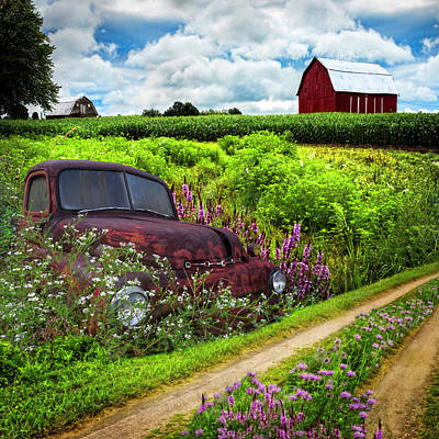 Photograph - Rusty Dodge Planted In The Wildflowers by Debra and Dave Vanderlaan