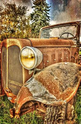 Photograph - Name Is Rusty by Thom Zehrfeld