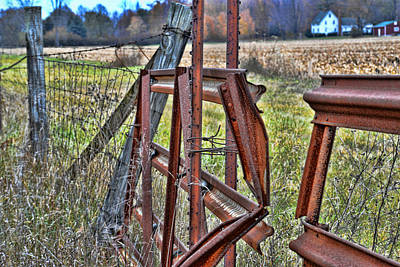 Rusty Gate Art Print by Pat Cook