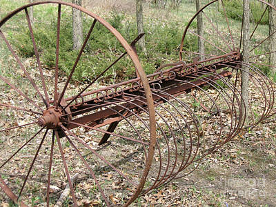 Photograph - Rusty Hay Rake by Ann Horn