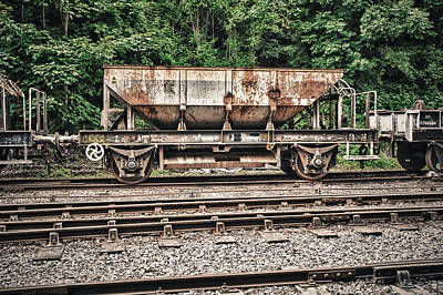 Photograph - Rusty Hopper by Stewart Scott