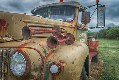 Photograph - Rusty Horns by Guy Whiteley