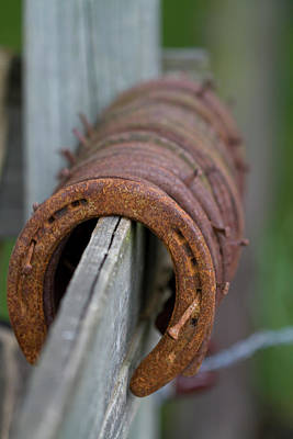 Photograph - Rusty Horseshoes by Kathy Clark