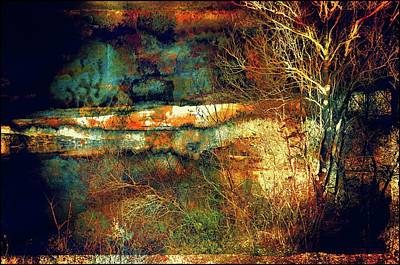 Photograph - Rusty Landscape by Lilia D
