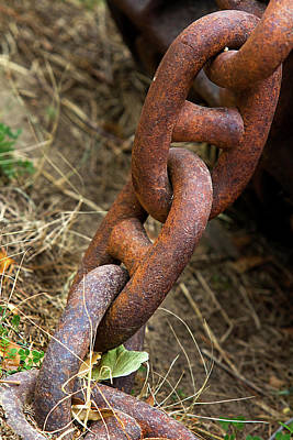 Rusty Links Art Print by Phyllis Denton