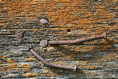 Rusty Nails On Weathered Wood Art Print