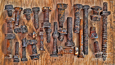Photograph - Rusty Nut Collection 1 by Debbie Portwood