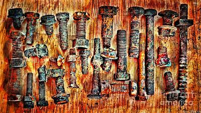 Photograph - Rusty Nut Collection 2 by Debbie Portwood
