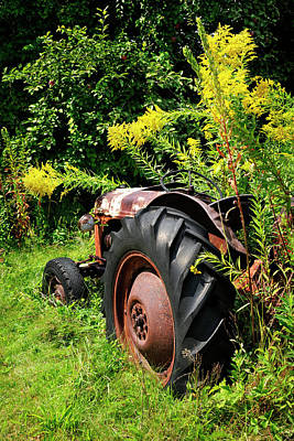 Photograph - Rusty Old Ford by Luke Moore