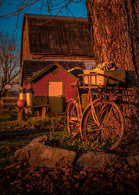 Photograph - Rusty Ride by Brad Koop