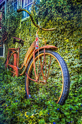 Photograph - Rusty Rims by Debra and Dave Vanderlaan
