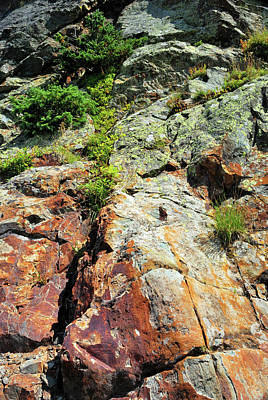 Photograph - Rusty Rock Face by Ron Cline