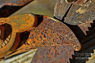 Photograph - Rusty Tools 3  by Debbie Portwood