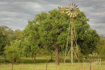 Photograph - Rusty Windmill by David Cutts