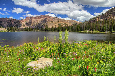 Photograph - Ruth Lake And Hayden Peak by Spencer Baugh
