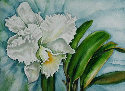 Ruth's Orchid Art Print