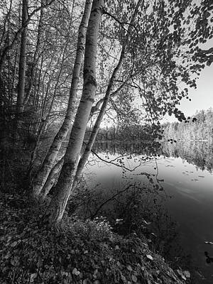 Photograph - Ruutanalampi Bw by Jouko Lehto