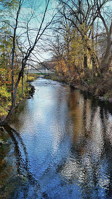 Photograph - River Raisin by Pat Cook
