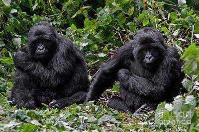 Photograph - Rwanda_d170 by Craig Lovell