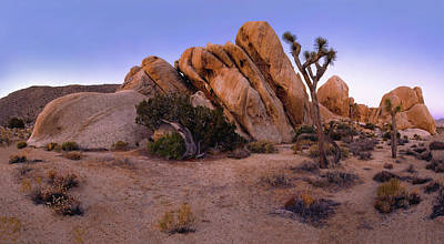 Photograph - Ryan Mountain Rock Formation Pano View by Paul Breitkreuz