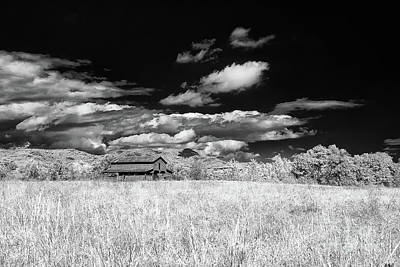 Photograph - S C Upstate Barn Bw by Charles Hite