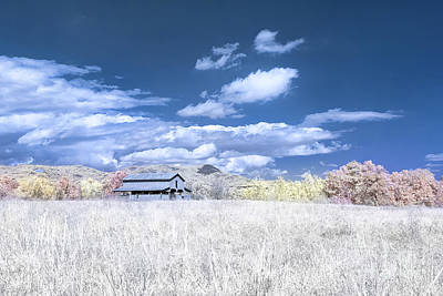 Photograph - S C Upstate Barn Faux Color by Charles Hite