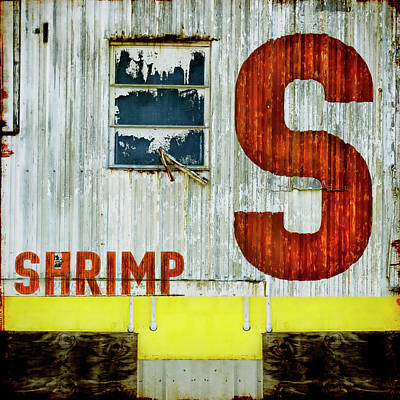 S Is For Shrimp  Art Print by Carol Leigh