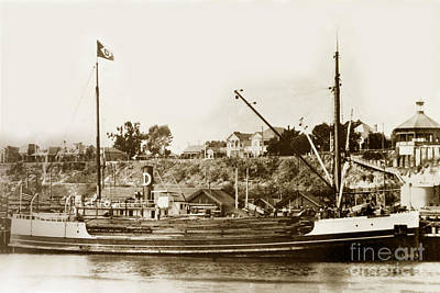 Photograph - S. S. Tiverton Built 1906 Steam Schooner Being Unloaded At S by California Views Mr Pat Hathaway Archives