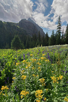 Photograph - S4 - San Juan Mountains by Aaron Spong