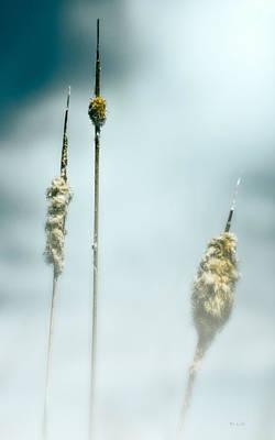 Photograph - Sabattus Pond Impressions II by Bob Orsillo