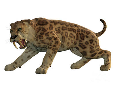 Saber-toothed Painting - Saber-tooth Cat Angry by Corey Ford