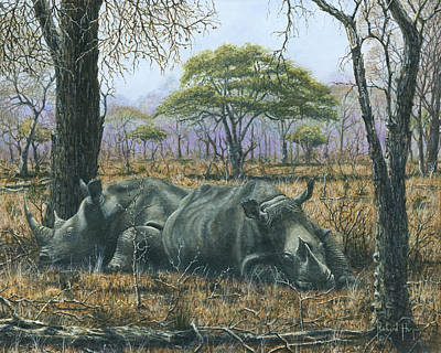 Rhino Painting - Sabi Sand Siesta by Richard Harpum