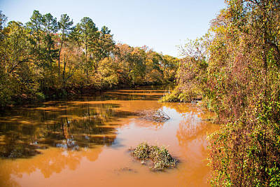 Flooding Digital Art - Sabine River Near Big Sandy Texas Photograph Fine Art Print 4080 by M K  Miller